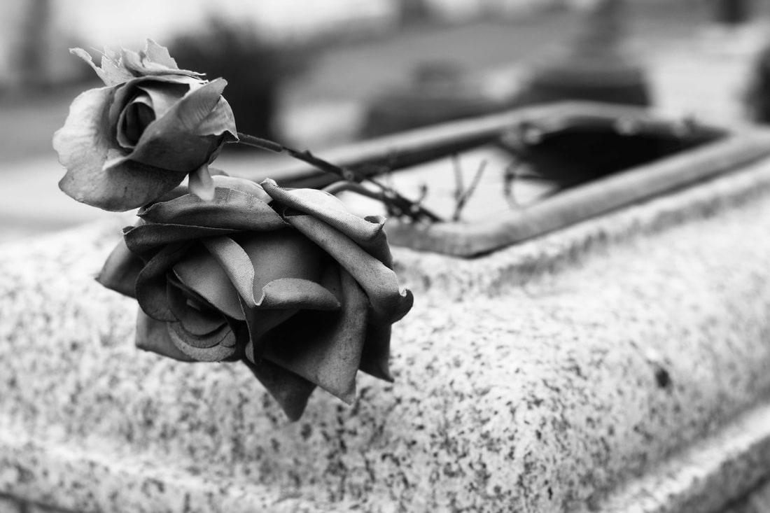 Certosa Cemetery Bologna flowers