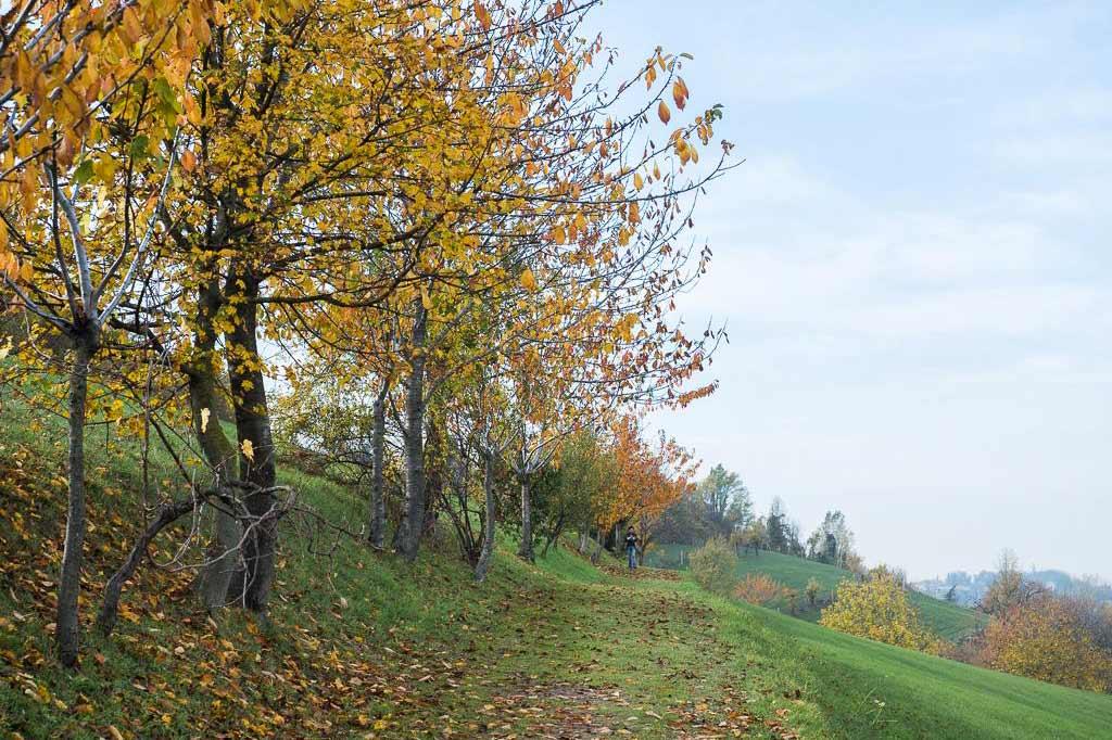 Villa Ghigi Park in Bologna during autumn foliage