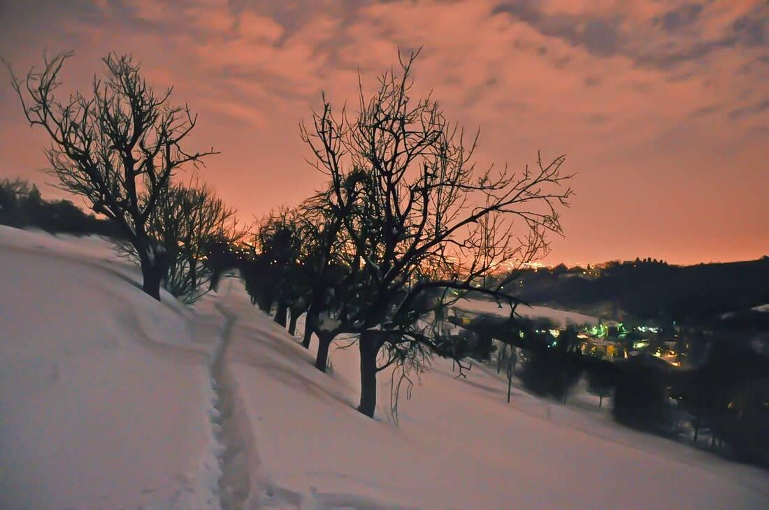 Villa Spada park with snow in Bologna