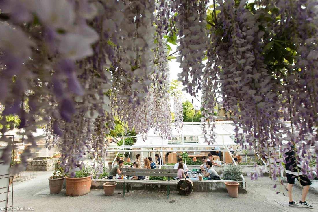 Summer in Bologna - Aperitivo at Le Serre dei Giardini Margherita